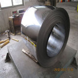 Cold Rolled 304 Stainless Steel Coil Price