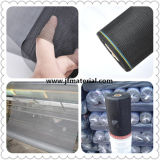 UV-Resistant Screen/Insect Screen/Screen Mesh/Mosquito Screen/Door Window Screen