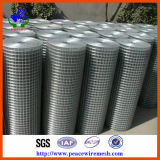 Hot Dipped Galvanzied Welded Wire Mesh