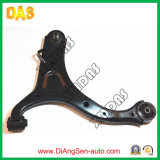 Front Lower Control Arm for Hyundai Santa Fe (54500-2B000/54501-2B000)