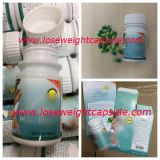 Lipro Herbal Dietary Slimming Capsule Diet Pills for Weight Loss
