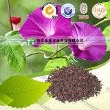 100% Pure Natural Herb Medicine Pharbitis Seed