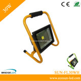 Rechargeable and Portable 30W LED Flood Light (SUN-FL30WH)