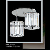 2011 Modern Decorative Ceiling Lamp (MD-8023/S)