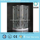 China Made Sliding Luxury Simple Shower Room (BLS-9608)