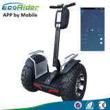 Ecorider 4000W off Road Balance Scooter Self Balancing Electric Scooter