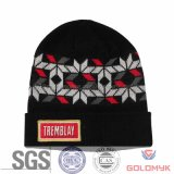 Jacquard Winter Knitted Hat with Patch Embroidery (GK06-S1001)