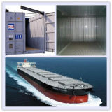 Professional Special Consolidate Container Shipping From China to Italy