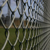 PVC Coated Chain Link Fence/Sports Field Fencing (Yunde factory)