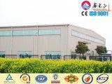 Low Cost Steel Structure Workshopwarehouse (SSWW-16070)