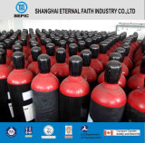 Tped DOT 40L Seamless Steel Gas Cylinder