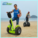 2017 Ecorider Two Wheel Stand up Electric Scooter with Ce