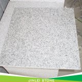 Quarry and Factory Owner Cheap Popular Chinese White Grey with Factory Price Granite Tile