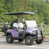 3.7kw Kds Motor Ce Approved Battery Golf Cart