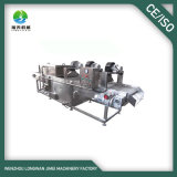 Date Palm Washing and Drying Production Line with 29 Years Experience