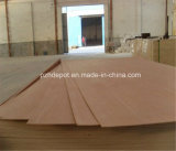 Special AA Grade Commerical Plywood for Furniture
