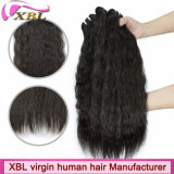 Top Wholesale Natural Virgin Malaysian Kinky Straight Hair