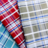 Cotton Yarn Dyed Dobby Check Fabric (LZ5551S)