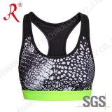Spandex and Breathable Sports Bra (QF-S381)