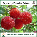 100% Natural Bayberry Powder Extract with High Antioxidant Myricetin (50%-98%)