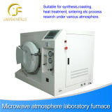 Microwave Thermal Equipment, Multifunction Microwave