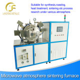 Microwave Assisted Synthesis, Microwave Reaction System