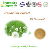 Powder Form and Solvent Extraction Extraction Type Dandelion Extract