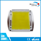 Warm White Color High Power LED Light Source
