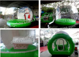 New Hot Christmas Inflatable Products with Cheap Price (CYAD-1461)