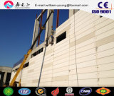 China Supplier Autoclaved Lightweight Aerated Concrete Panel, AAC Panel (JW-16220)
