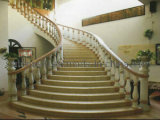 Marble Staircase/ Tread/ Steps for Indoor Building