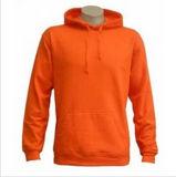 Custom Nice Cotton/Polyester Plain Hoodies Sweatshirt of Fleece Terry (F053)