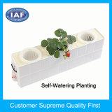 Household Self Watering Window Hydroponics Plastic Flower Pots