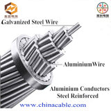 Bare Conductor for Power Transmmision (aluminum power cable 10kV)