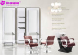 Popular High Quality Salon Furniture Shampoo Barber Salon Chair (P2012)