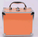 Aluminum Alloy Makeup Professional Capacity Cases with Mirror
