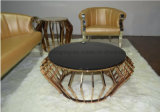 Gold Stainless Steel Glass Coffee Table End Table Side Table
