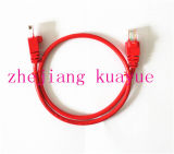 8 Number of Conductors and Cat 6 Type CAT6 UTP Patch Cord/Computer Cable/Data Cable/Communication Cable/Audio Cable/Connector
