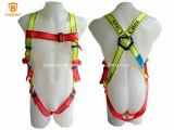 Safety Harness Belt Printed Safety Belt Citex China Manufacturer