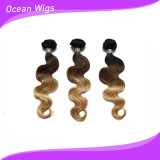 Cheap Cambodian Virgin Hair, Omber Color Body Wave Hair Extension