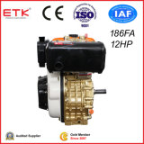 12HP Diesel Engine with CE Golden Back Side