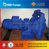 Dby Electric Operated Diaphragm Pump for Circulation ISO9001 Certified