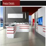 High Gloss Integrated Kitchen Furniture