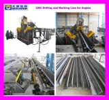 CNC Drilling Machine for Angles Used in Transmission Tower Industry (TBL2532)