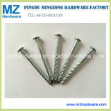 "Bwg9*2.5"" Galvanized Screw Twisted Shank Roofing Nail"
