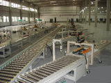 Roller Conveyor Line 2 for Prodution Assembly