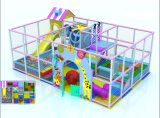 Various Themes Indoor Playground for Kids (TY-14014)