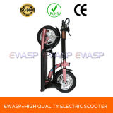 Fashionable Best Quality Electric Scooter Wholesale in China