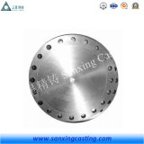 ASME Carbon/Stainless Steel Tube Sheet Flange Manufacturer/Supplier