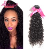 100% Unprocessed Remy Human Hair Malaysian Hair Bundles
